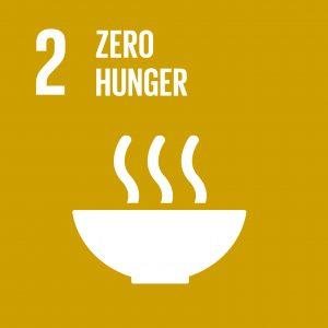 E_SDG goals_icons-individual-cmyk-02